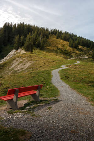 Hiking trail to the top of the Edelsberg in the Allgäu Alps 免版税图像