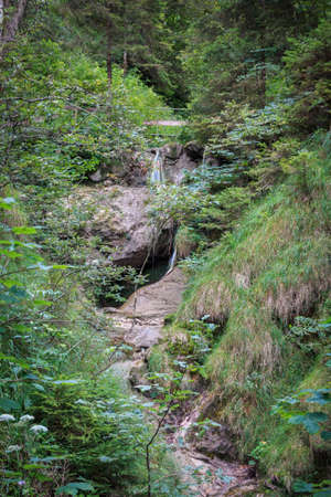 Mountain stream at the waterfall path to the ascent to the Alpspitz in Nesselwang 免版税图像