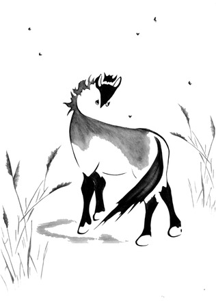 Watercolor illustration with a black and white horse grazing in a meadow. Illustration executed in traditional chinese style, isolated on white background. Stock Photo