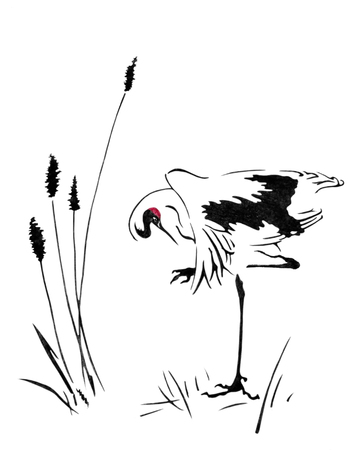Watercolor with a beautiful crane. Crane stands on one leg in the middle of a swamp. Illustration executed in traditional chinese style, isolated on white background.