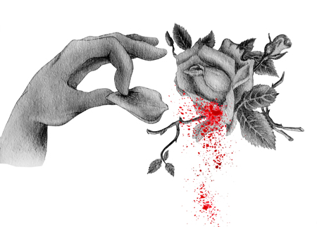 On the watercolor is a human hand and a rose petal, which was wrest from the bud with drops of blood. An illustration of a hand made watercolor, isolated on a white background, can be used to create a
