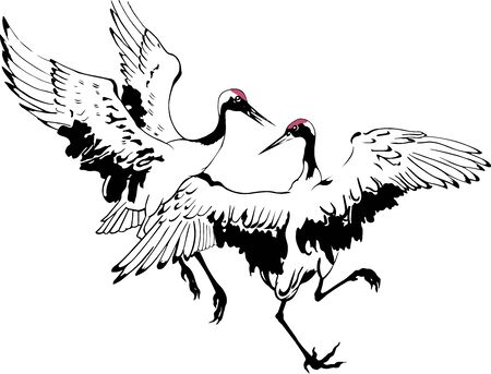 Vector illustration with traditional Chinese painting of two dancing cranes, isolated white background.  Wedding invitations, greeting cards, prints, textile design, wallpaper. Ilustracja