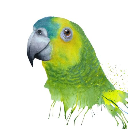 Watercolor illustration with green amazon parrot close up. Watercolor made by hand for the design of your project, wallpaper, prints. Zdjęcie Seryjne