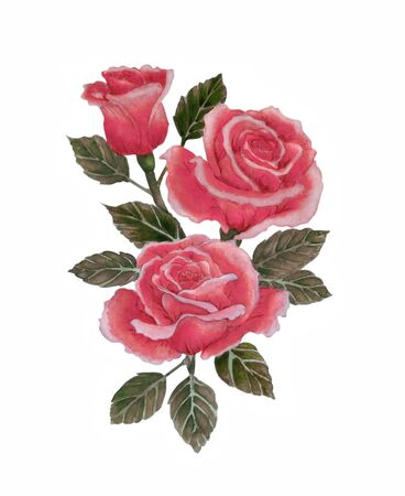 Watercolor illustration with beautiful bouquet of red roses. Greeting card,prints, textile design, packaging Stock Photo