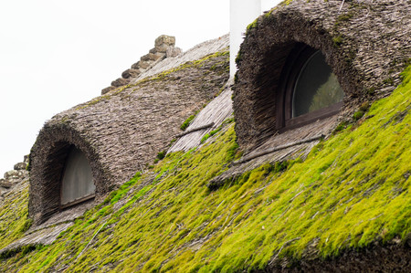 Green mossy house roof made of thatching