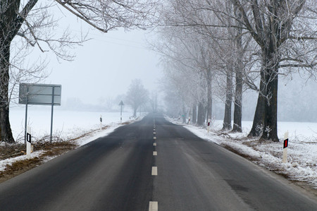 Foggy road with trees next to it Stock Photo