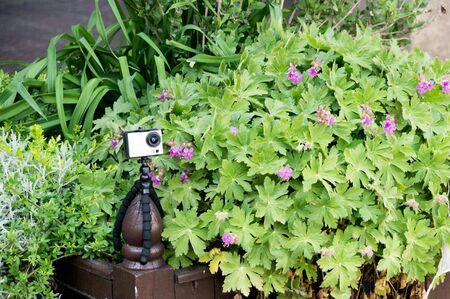 Hidden action cam in flower holder