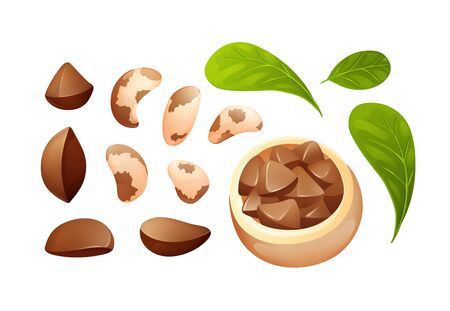 Brazil nut set, different statements and rotations