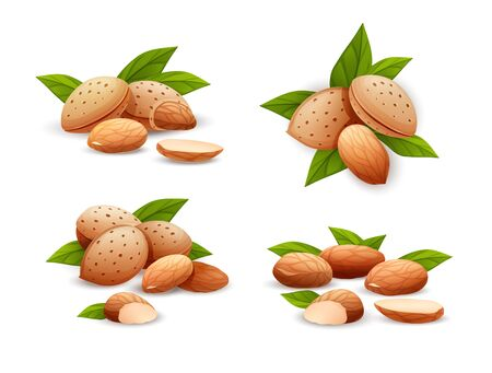Almond nut compositions set, different statements. Whole and cracked nuts, hulled and raw kernels and green leaves. Good for labels and stickers, packaging design. Vector illustration in cartoon style, groups of objects, isolated on white Çizim