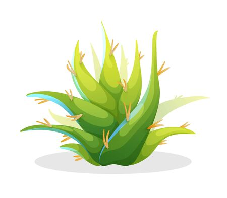 Aloe vera in cute cartoon style, mexican plant