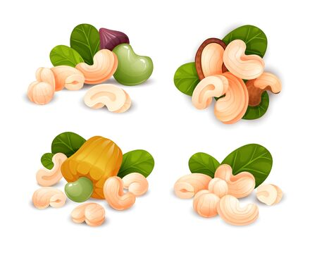 Cashew nut compositions set, different statements. Whole and cracked nuts, hulled and raw kernels and green leaves. Good for labels and stickers, packaging design. Vector illustration in cartoon style, groups of objects, isolated on white