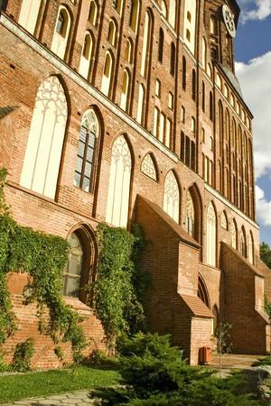 immanuel: Immanuel Kant cathedral in Kaliningrad