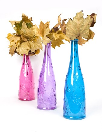 wither: bright multicolored design decorative bottles with wither maple leaves Stock Photo