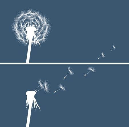 overblown: two dandelion buds silhouette on blue background vector