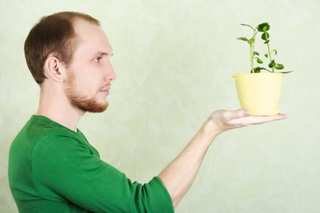 man in green shirt holding yellow flowerpot with Kalanchoe plant, sideview photo