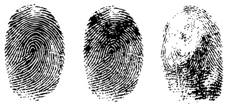 distinguish: different black fingerprints, vector Illustration