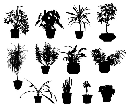 vase: silhouette of different potted plants vector