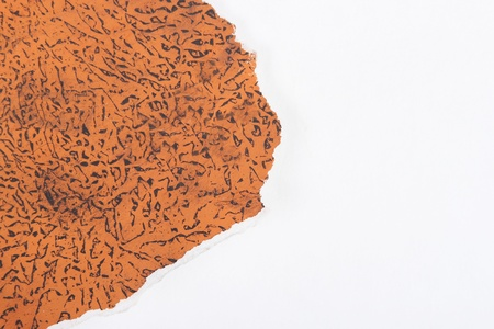 lacerated: sheet of paper with orange pattern Stock Photo