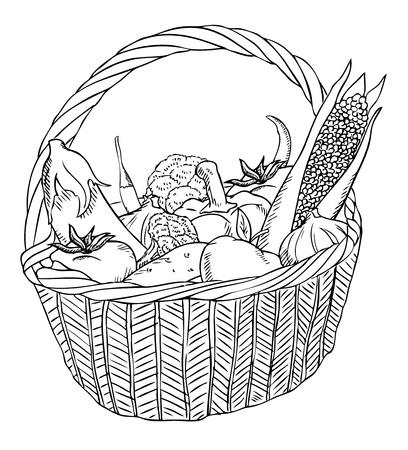 harvest basket: basket with different vegetables