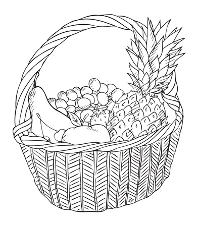 basket with different fruits   Illustration