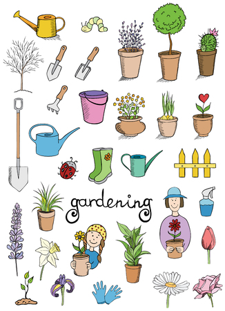 lavender flower: gardening color icons vector collection