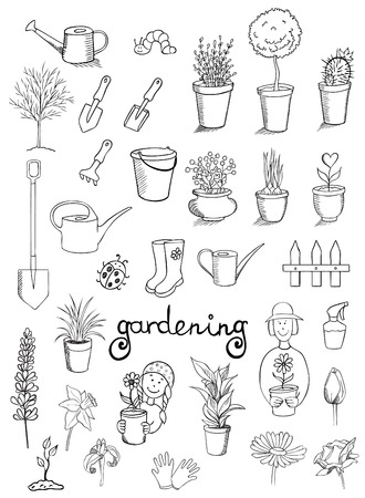 potted plant cactus: gardening icons vector collection