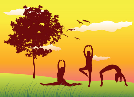 splitting: silhouette of three women making gymnastics exercises on summer field near tree, yellow sky