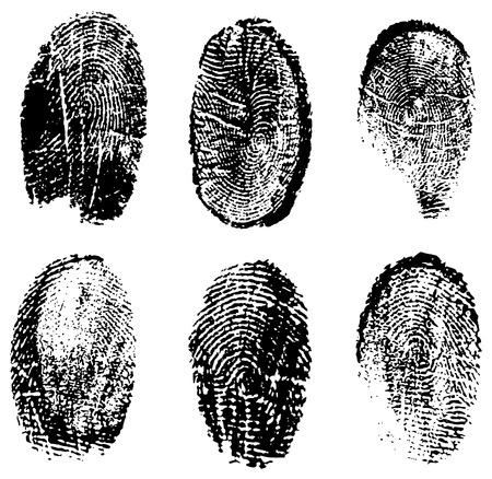 distinguish: many different black fingerprints, vector