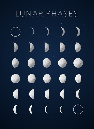 moon surface: realistic textures Lunar phases vector