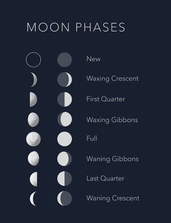 Lunar phases with flat and realistic symbols vector Illustration