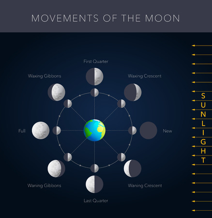 lunar phases: Movements of the moon, 8 lunar phases vector