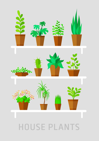 potted plants flat vector set on grey
