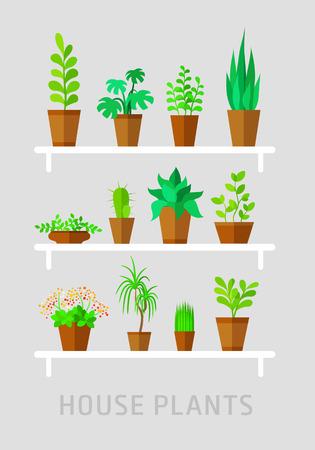 multiple house: potted plants flat vector set on grey Illustration