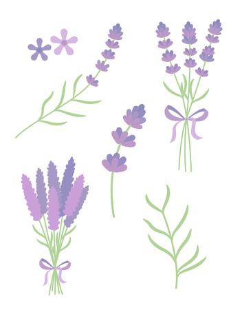 fragrant bouquet: lavender flat vector set
