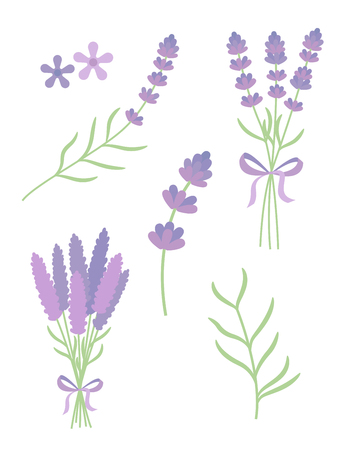lavender flat vector set