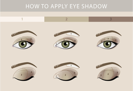 makeup fashion: Eye makeup types template color beauty vector Illustration