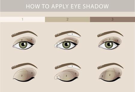 maquillaje de ojos: tipos de maquillaje de ojos de color plantilla de la belleza del vector