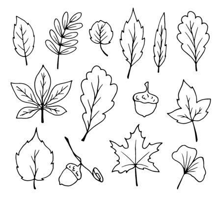 hand print: doodle leaves vector Illustration