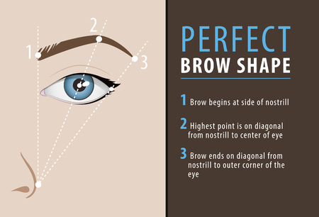 Perfect eyebrow shape tutorial. vector template Çizim