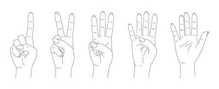 finger count vector, hands sketch set Иллюстрация