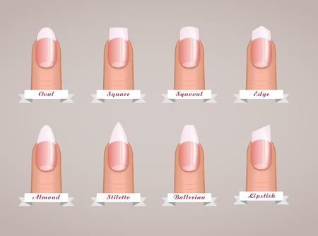 Professionele manicure verschillende vormen van nagels vector sjabloon. Stock Illustratie