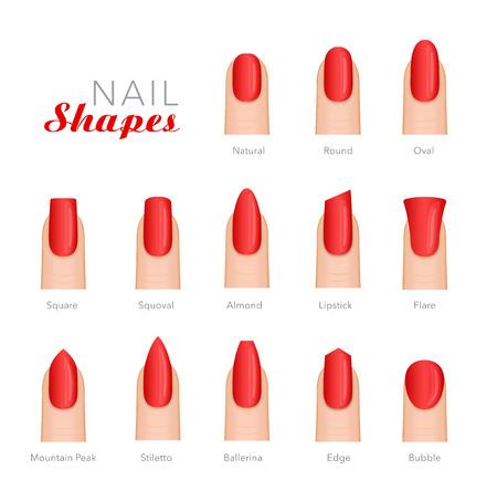 Forme differenti del manicure professionale di progettazione del modello di vettore delle unghie. Archivio Fotografico - 87576060