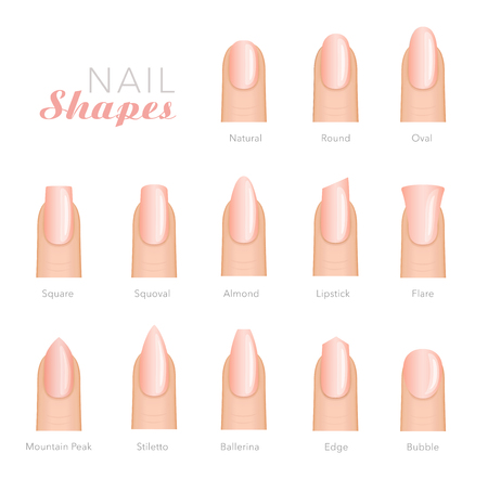 Professional manicure different shapes of nails vector Stock fotó