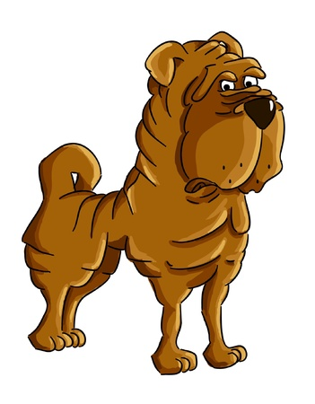 Cartoon Shar-pei  cartoon dog breed - vector