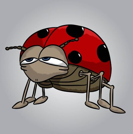 Cartoon ladybug (vector)