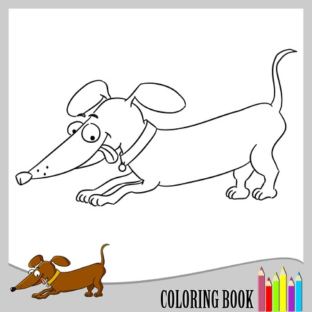 dog outline: Coloring book - sausage dog (vector)