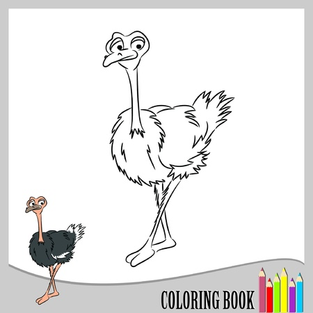 Coloring book - funny ostrich   Vector