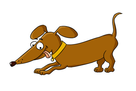 Cartoon dachshund  cartoon dog breed - vector