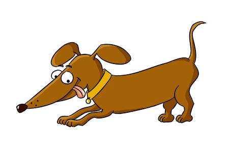 Cartoon dachshund  cartoon dog breed - vector