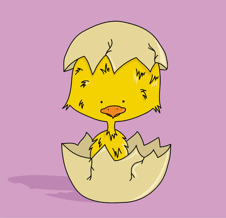 Cartoon small chick in egg  vector